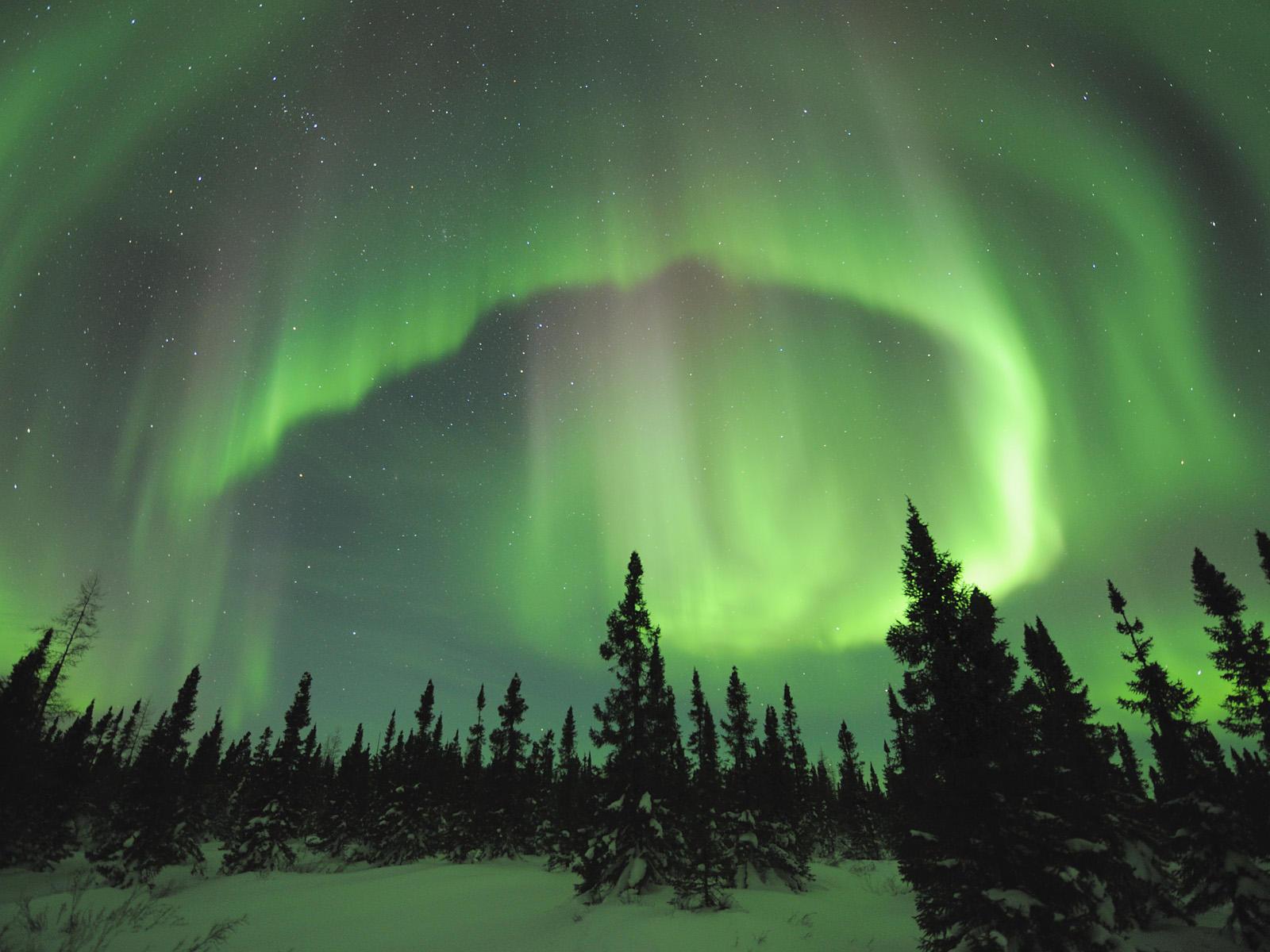 Manitoba, Canada --- Aurora Borealis in Manitoba --- Image by © Daniel J. Cox/Corbis