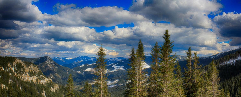 Nízke_Tatry_-_Krakova_hoľa_30.4_(170)_panorama.jpg