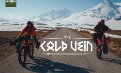 The_COLD_VEIN_1