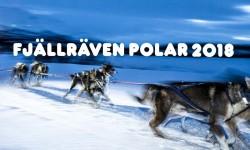 polar-cover