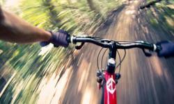 bicykelsymetria.jpg