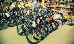 cykloskola-1-diel.jpg